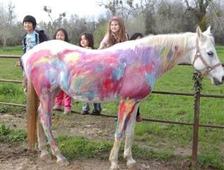horse birthday party Horse Ranch Birthday Parties at Tammy McDonald Training horse birthday party